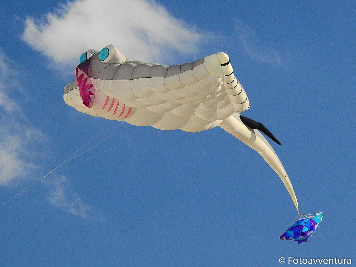 Uscita fotografica gratuita al festival internazionale dell'aquilone di Cervia